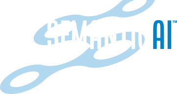 Semantic AI